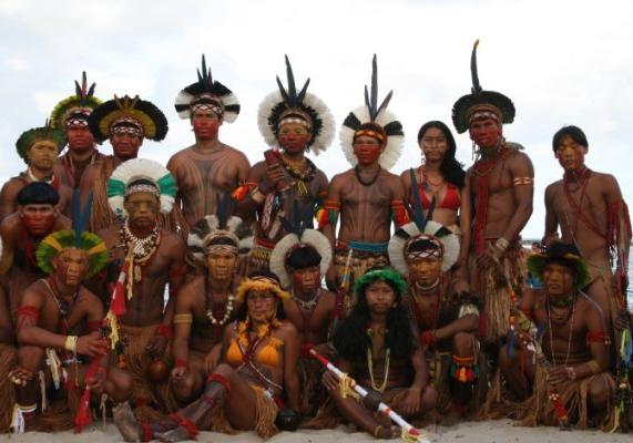Tribos Indígenas Brasileiras1