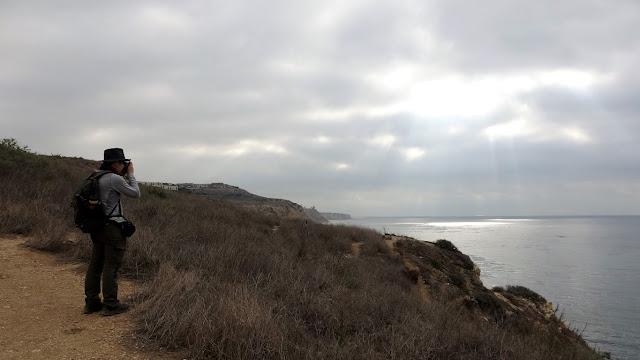 Ocean Trail Reserve