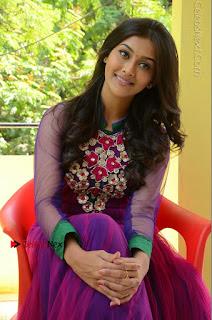 Actress Pooja Jhaveri Latest Stills in Purple Salwar Kameezt at Dwaraka Success Meet  0187.JPG