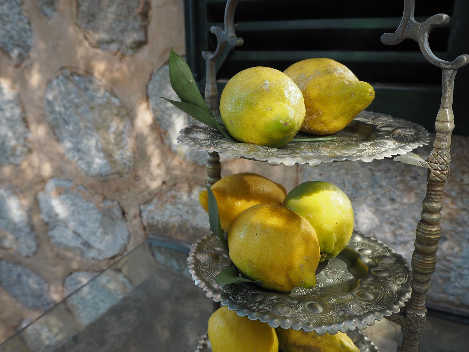 Freshly picked lemons in mallorca