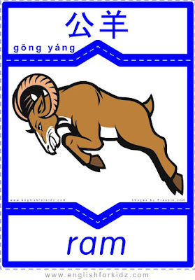 Ram - English-Chinese flashcards to learn wild animals