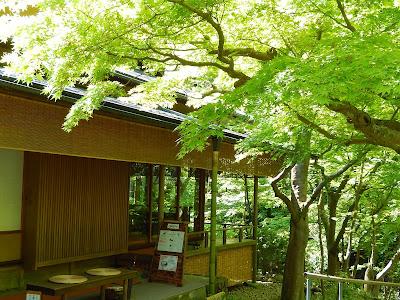 新緑の旧一条恵観山荘