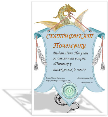 сертификат, магия биологии, почему у насекомых 6 ног