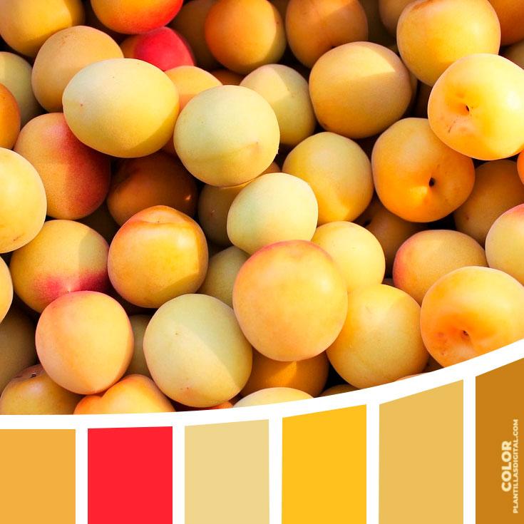 color_97