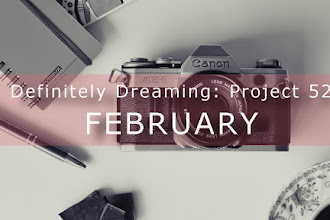 Definitely Dreaming: Project 52 </br> February