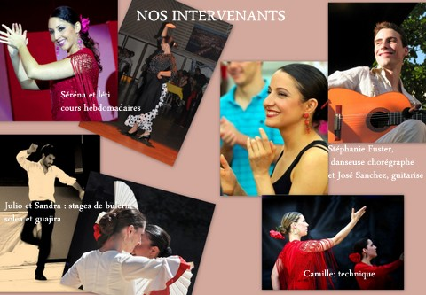 rencontre flamenca albi