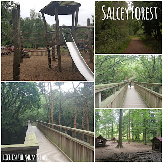 Parks and Playgrounds in Northamptonshire - Salcey Forest