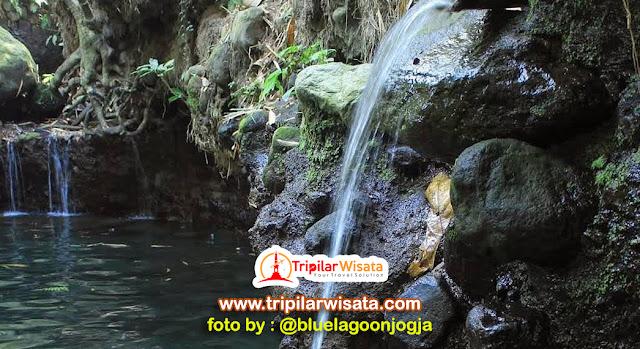 Blue Lagoon Jogja, Berenang di Kolam Alami