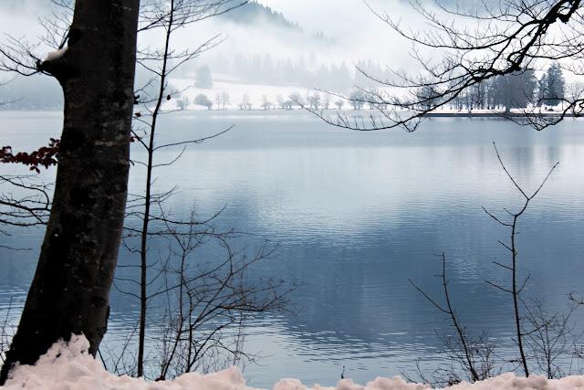Foggy Lake Bohinj