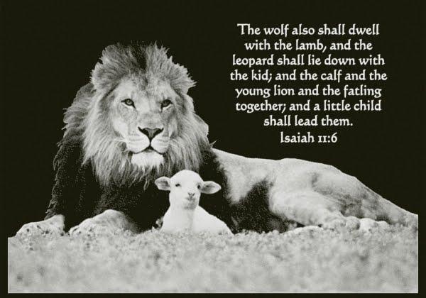 isaiah 11:6 black