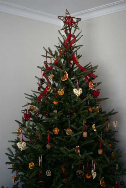 Misha And Mia Natural Christmas Tree Ornaments