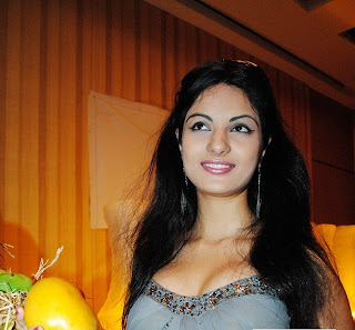 Actress Jinal Pandya at Mango Fiesta 2011 at Hotel Golkonda