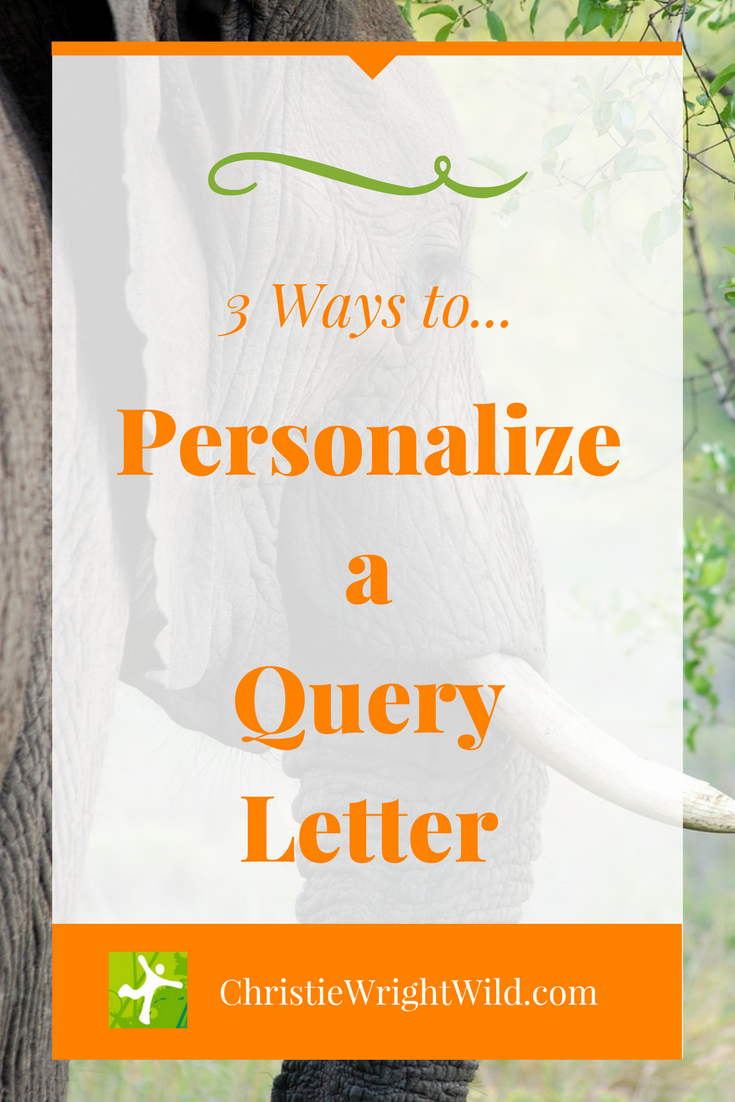 Write wild how to personalize a query letter how to personalize a query letter 3 ways to gain the attention of an editor altavistaventures Images