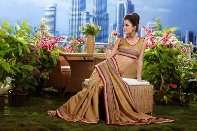 Raw Silk, Georgette & Crepe - Designer Sarees