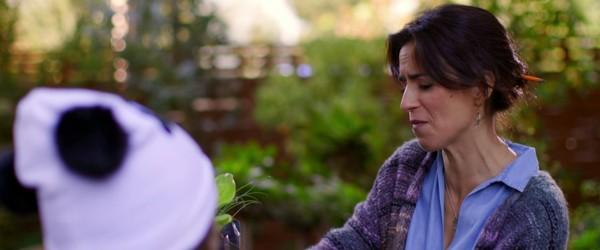 Dulce familia (2019) HD 1080p y 720p Latino
