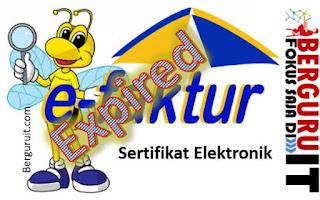 Cara Mengetahui Sertifikat Elektronik e-Faktur Expired Atau Tidak