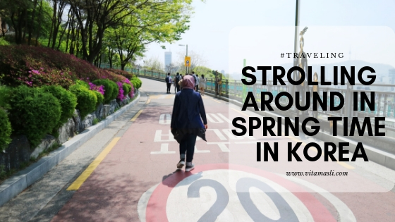 Strolling Around in Spring Time in Korea