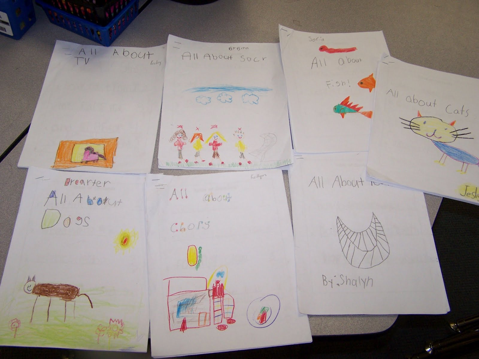 Report Writing In Kindergarten