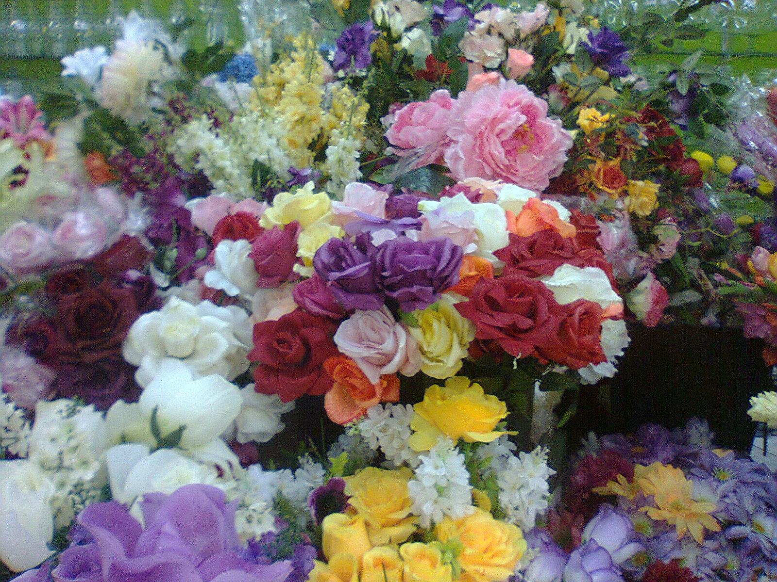 Claudia Lobato - Beijocas Coloridas - Arte e outras alegrias: Profusão -  Flores para quem te quero!