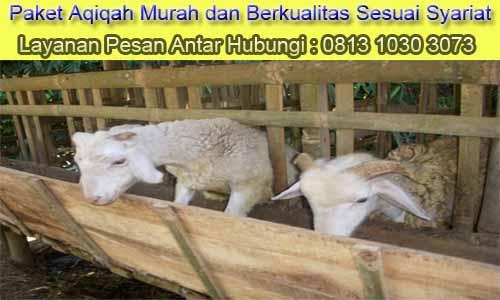 Aqiqah_Harapan Jaya_Bekasi Utara
