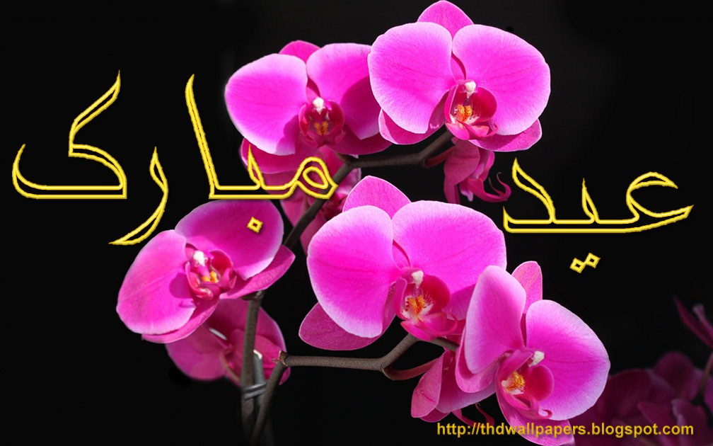 eiduladha zuha mubarak flowers greeting cards in urdu