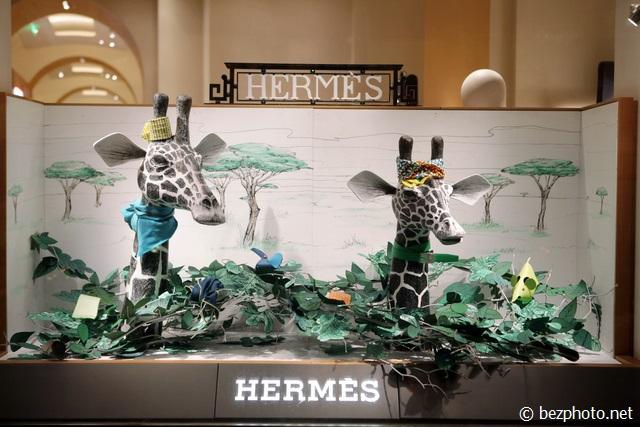 витрины hermes