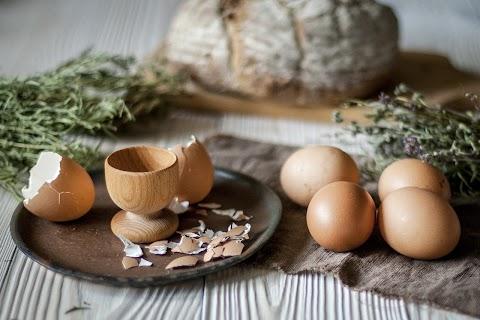 Agrárkamara: több mint tízmillió embert lát el a magyar élelmiszergazdaság