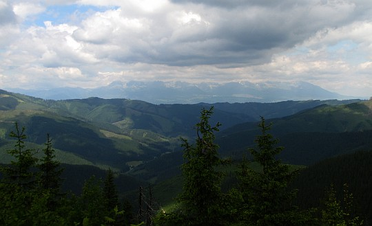 Panorama Tatr z Kolesárovej.