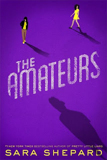 The Amateurs book cover