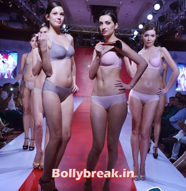 A fashion show on the Launch of Triumph's Body make up collection in Gurgaon 2014, India Bikini Fashion Show 2014 - Triumph