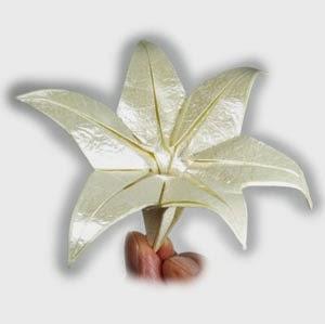 flores, flor, origami, manualidades,