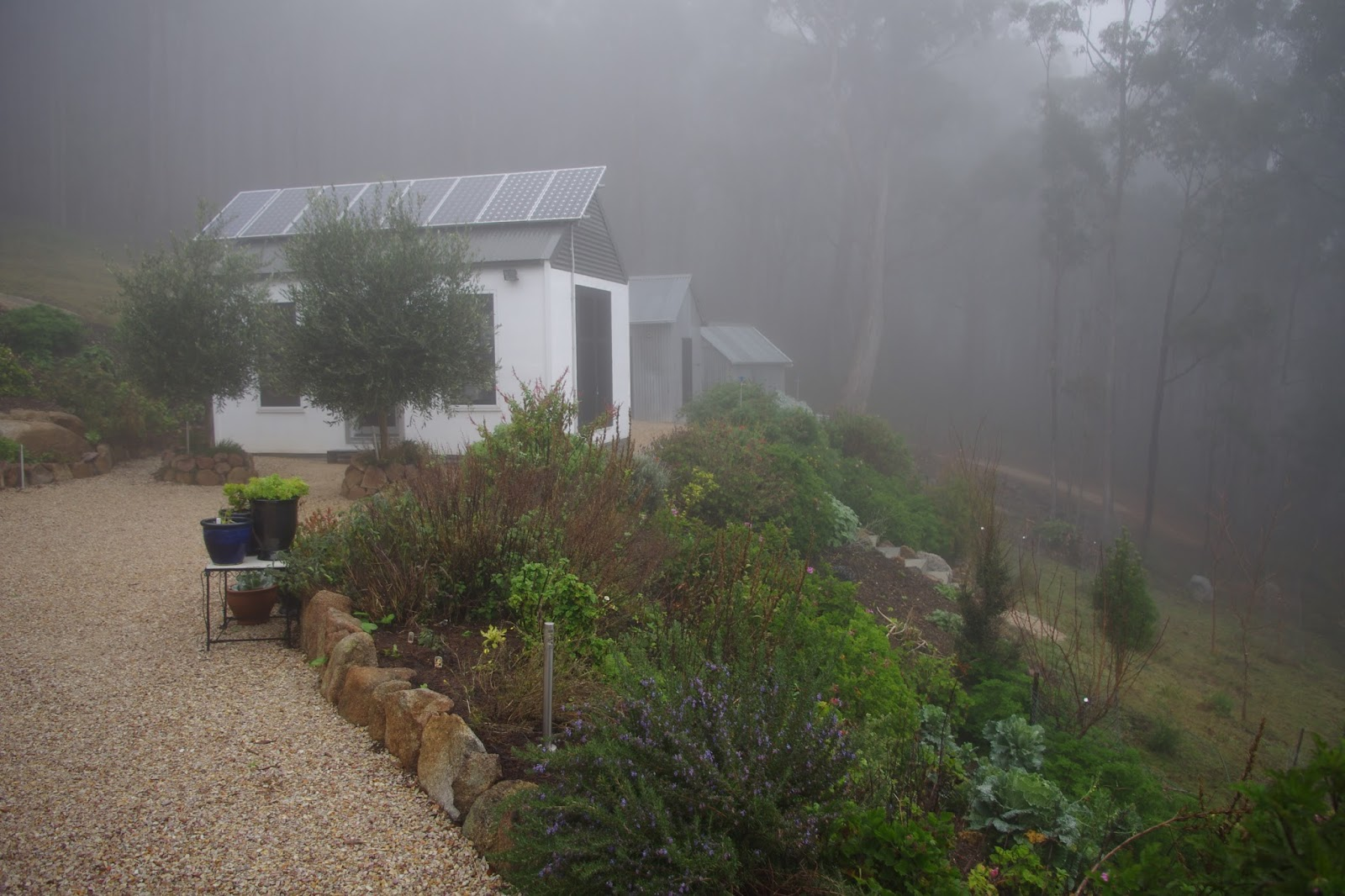 Fog and mist enveloped the farm for four consecutive days