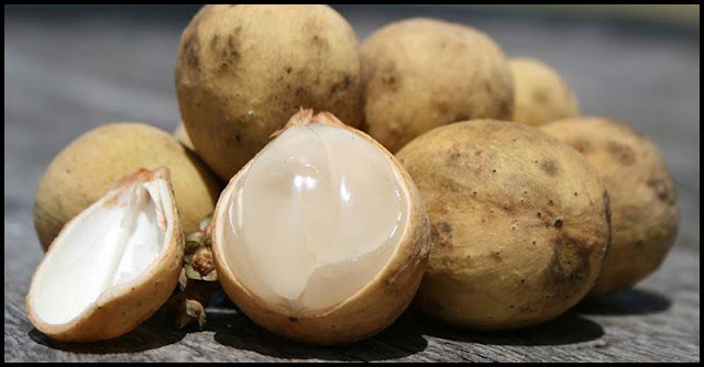 Lanzones: An Exotic Fruit With Multiple Health Benefits