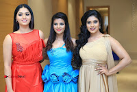 Tamil Cinema Celebrities Pos at Summer Fashion Festival 2017  0022.jpg