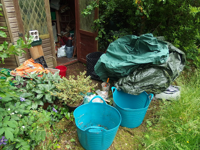 The garden strewn with items unearthed from my shed