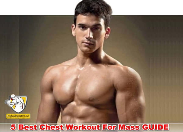 Chest Workout For Mass A Basic Guide for Beginners