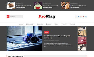 ProMag Template