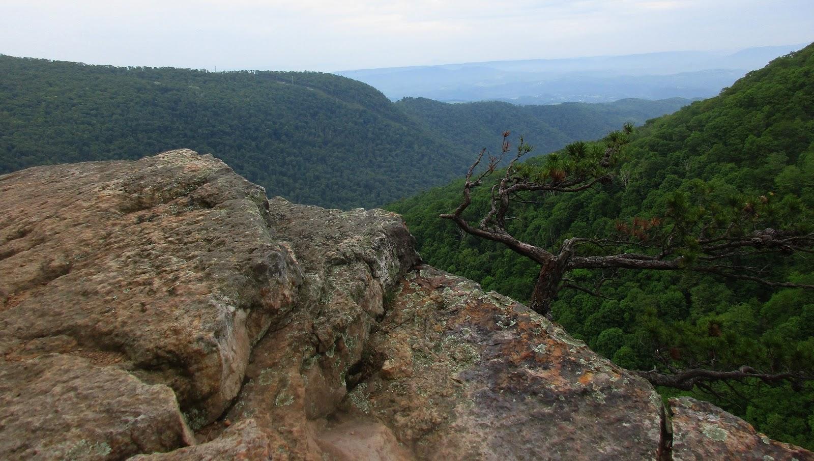 Butt mountain blacksburg virginia — 15