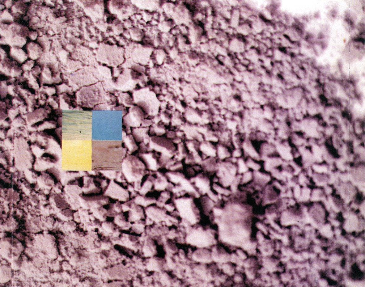 horacio-banegas-el-color-de-la-chacarera-interior