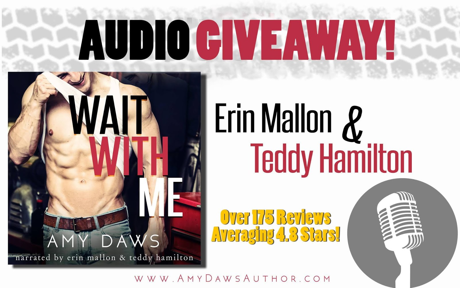 Lisa Loves Literature: Giveaway: Audio Code for Wait With Me
