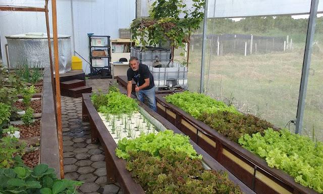 Projeto experimental de Aquaponia recebe visitantes