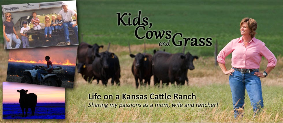 Kids, Cows and Grass