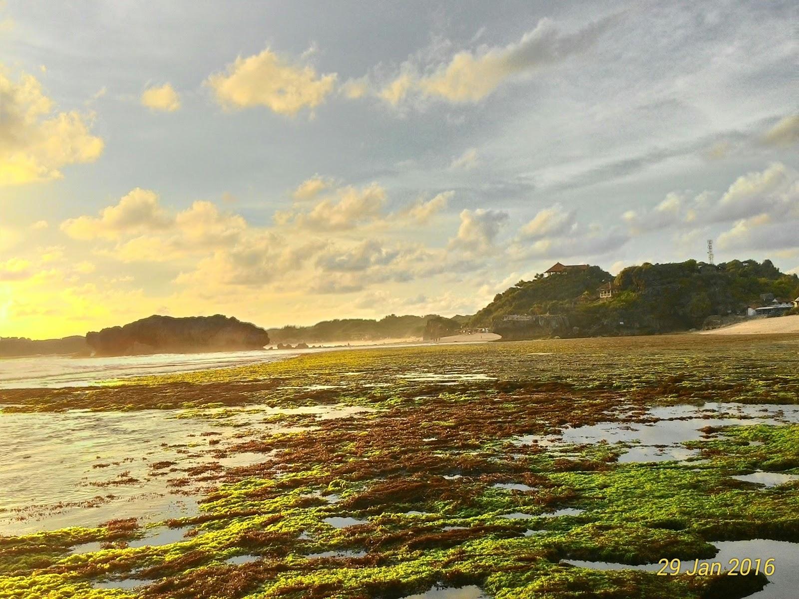 Image Result For Wisata Alam Kalibiru