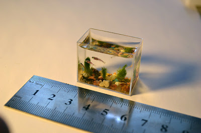 World's Smallest Aquarium With Fishes (7) 3
