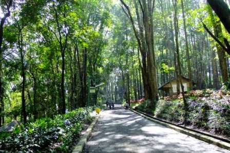 Taman Muara angke : tempat wisata di jakarta Utara