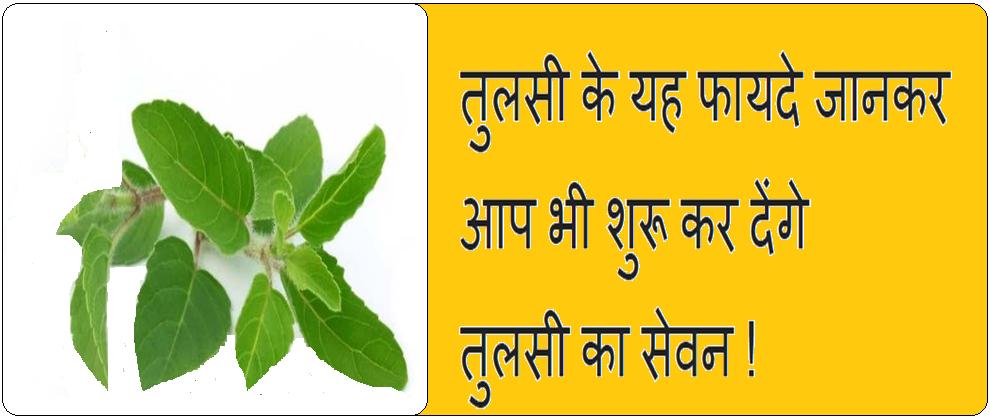 Tulsi ke 10 fayde, in Hindi