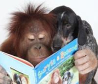анкдоты приколы и юмор про собак