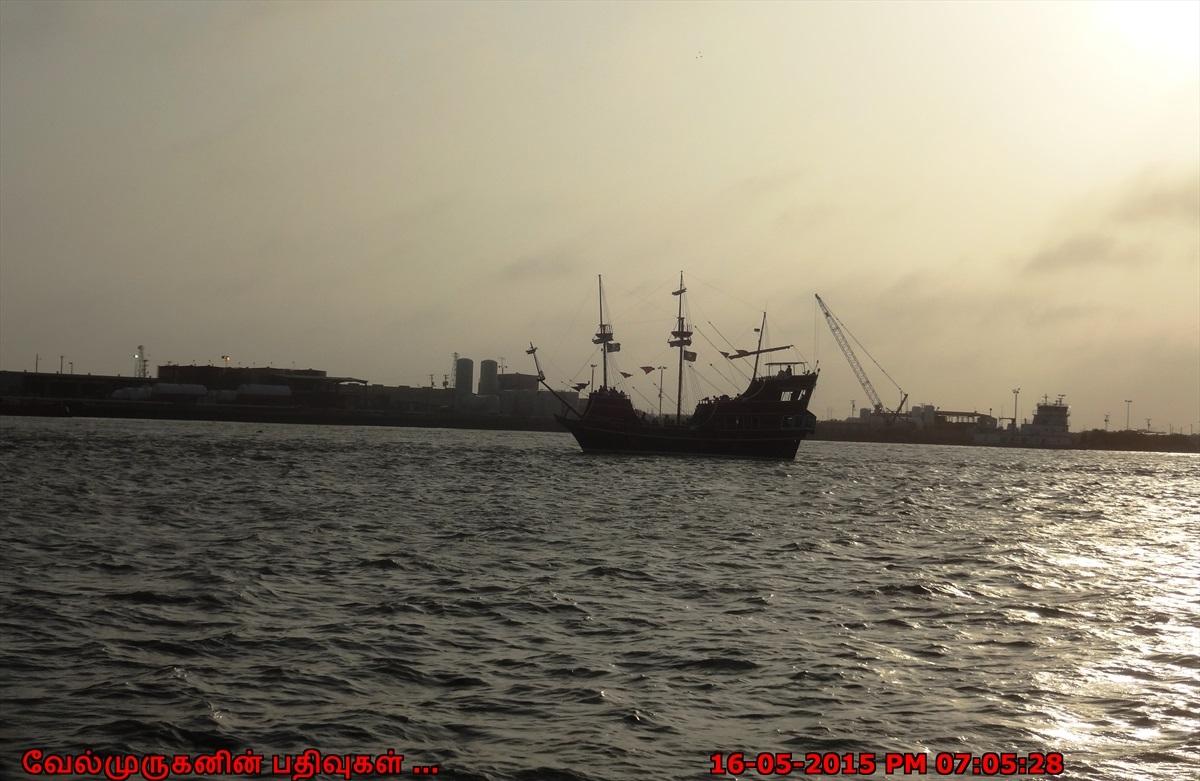 Dolphin Watch In Port Aransas Exploring My Life