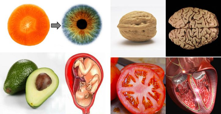 10 Foods That Look Like The Organs They Heal