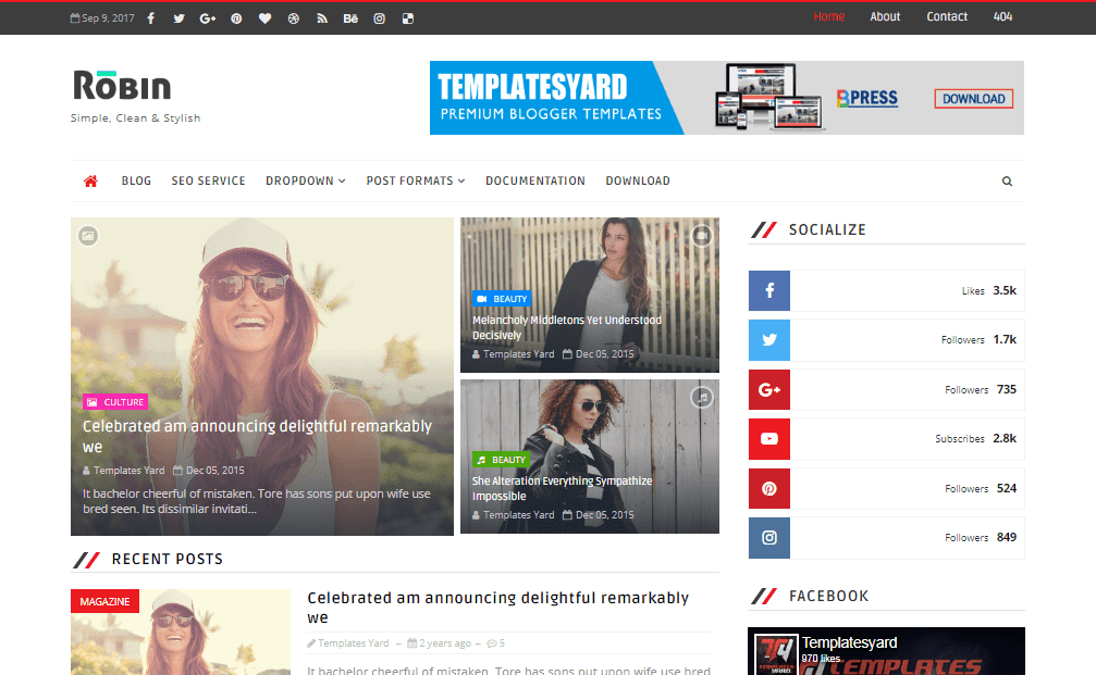 Robin-blog-blogger-template-2020